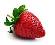 Eine Erdbeere auf einem weißen Hintergrund Stockfotografie