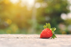 Eine Erdbeere auf Holz Stockbilder