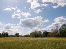 Eine erstaunliche Landschaftsszene draußen im Sommer im Großbritannien es Stockfotos
