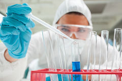 Eine fallende Flüssigkeit des Wissenschaftlers in einem Reagenzglas Stockbilder