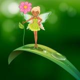 Eine Fee, die eine Blume steht über einem Blatt mit einem Tau hält Lizenzfreie Stockfotos
