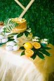 Eine festliche kandi Stange verziert in einer tropischen Art mit Zitronenkuchenmuffins und Eibische und helle Ballone lizenzfreie stockfotos