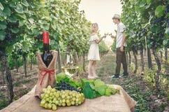Eine Flasche Wein, Rebe und Glas Wein Stockbilder