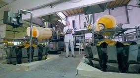 Eine Frau arbeitet an einer Nahrungsmittelfabrik und überprüft Prozess des Chipsortierens stock footage