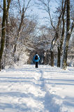 Eine Frau, die in den Schnee geht Stockbilder