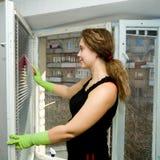 Eine Frau, die ein Fenster säubert Lizenzfreies Stockfoto