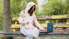Eine Frau, die an einem Laptop mit einem Hund schreibt und arbeitet stock video
