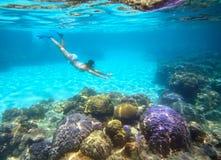 Eine Frau, die im schönen Korallenriff mit vielen Fischen schnorchelt Stockbild