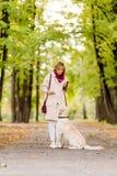 Eine Frau geht mit ihrem Labrador im Fall stockbilder