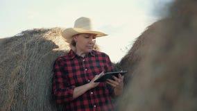 Eine Frau ist ein Landwirt mit einer Tablette an einem Heuschober bewirtschaften Vorbereitung des Futters für Winter stock video footage