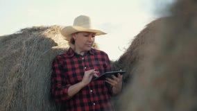 Eine Frau ist ein Landwirt mit einer Tablette an einem Heuschober bewirtschaften Vorbereitung des Futters für Winter stock video