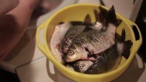 Eine Frau legt frische Fische nieder, um Abendessen zu kochen stock footage