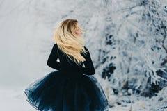 Eine Frau mit dem herrlichen Haar steht zurück im Winter im Park stockfotos