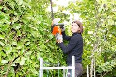 Eine Frau schneidet die Hecke mit einem elektrischen Heckenschneider lizenzfreie stockfotografie