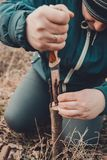 Eine Frau schneidet einen jungen Baum mit einem Messer f?r die Impfung der Fruchtniederlassung stockfotos