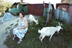 Eine Frau und die Ziegen Lizenzfreie Stockfotografie