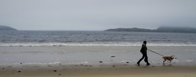 Eine Frau und ein Hund nahe dem Meer stockfotografie