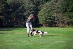 Eine Frau und ihr Hund, die in einer Wiese spielen Stockbilder