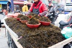 Eine Frauenverkaufsmeerespflanze auf einem Warenkorb im Meeresfrüchtemarkt, Busan, Südkorea Lizenzfreies Stockfoto