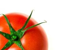 Eine frische rote Tomate lokalisierte Nahaufnahme stockfotografie