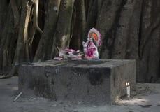 Eine Göttin wird im Freilicht unter einem Banyanbaum angebetet stockfotos