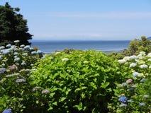 Eine Garten Ansicht lizenzfreies stockfoto