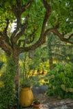Eine Garten Ansicht lizenzfreie stockfotografie
