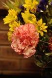 Eine Gartennelke, die ein Teil eines bunten Blumenstraußes ist stockfotos
