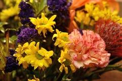 Eine Gartennelke, die ein Teil eines bunten Blumenstraußes ist lizenzfreie stockbilder
