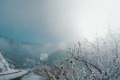 Eine gefährliche Winterserpentinstraße mit den Aufmerksamkeitszeichen umfasst Lizenzfreie Stockfotografie
