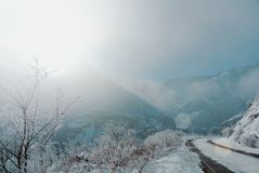 Eine gefährliche Winterserpentinstraße mit den Aufmerksamkeitszeichen umfasst stockfotografie