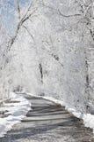 Eine gefrorene Bahn Stockfotografie