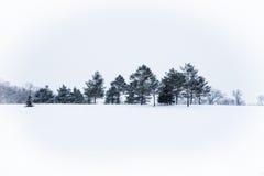 Eine gefrorene Landschaft Lizenzfreies Stockfoto