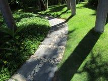 Eine gehende Bahn gemacht von den Steinplatten unter Gras Stockbild