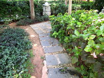 Eine gehende Bahn gemacht von den Steinplatten unter Gras Stockbilder
