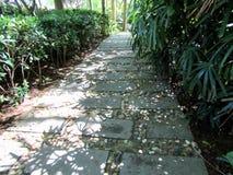 Eine gehende Bahn gemacht von den Steinplatten unter Gras Lizenzfreie Stockfotografie