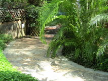Eine gehende Bahn gemacht von den Steinplatten unter Gras Lizenzfreies Stockfoto