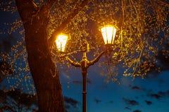 Eine glänzende Laterne während des späten Sonnenuntergangs unter der Krone der Pappel Stockbild