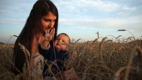 Eine glückliche junge Mutter und ihr Sohn sitzen auf einem Weizengebiet Das Baby, das neugierig Ohren des Weizens betrachtet stock footage