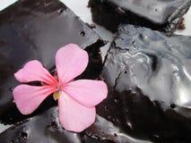 Eine glasig-glänzende Reihe von Schokoladen-Schokoladenkuchen lizenzfreies stockbild