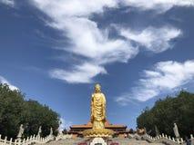 Eine goldene Buddha-Stellung hoch auf dem Lotos lizenzfreies stockbild
