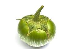 Eine grüne Aubergine Lizenzfreie Stockfotografie