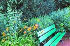 Eine grüne Parkbank Stockbilder