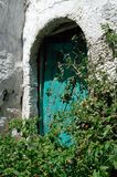 Eine grüne Tür hinter Grünpflanzen Stockfotos