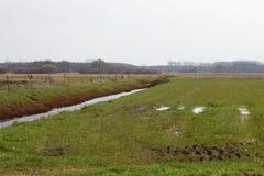 Eine Grabung, die mit Wasser gefüllt wird, laufen entlang die Wiese lizenzfreies stockbild