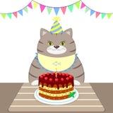 Eine graue Bonze in einem Schutzblech und in einer Kappe sitzt am Tisch und isst einen Kuchen Alles Gute zum Geburtstag Lizenzfreies Stockfoto