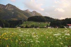 Eine große Ansicht über eine Wiese zu den Bergen Sie können solche großen Ansichten während des Reisens in Bayern Deutschland seh stock abbildung