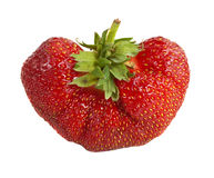 Eine große Erdbeere Lizenzfreie Stockbilder