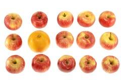 Eine großen orange und roten Äpfel Stockbild