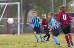 Eine Gruppe Jugend-Fußball-Spieler konkurrieren Stockbild